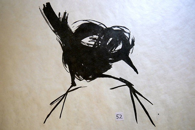 Rabenvogel1.jpg